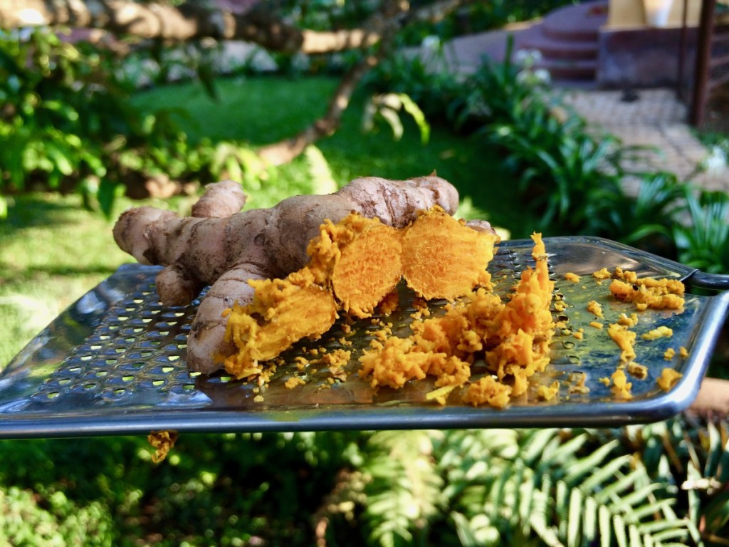 Some of my freshly grated turmeric at my retreat in India